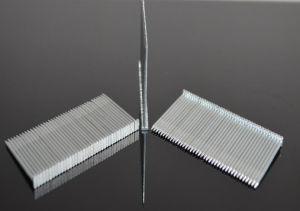 St Brad Nails Concrete Steel Nails pictures & photos