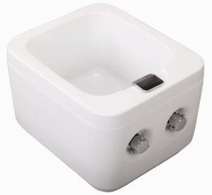 Temperature Control Foot Bath SPA (MY-Z2016) pictures & photos