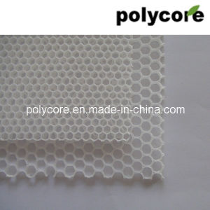 Honeycomb Panel PP Honeycomb pictures & photos