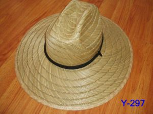 Straw Hat pictures & photos