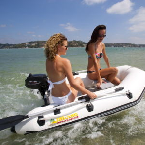 Parsun 2HP Outboard Engine pictures & photos