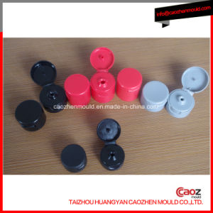 Plastic Injection Flap/Clamshell Cap Mould pictures & photos