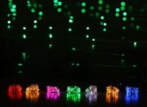 DC12V Copper Wire LED String Light with Adapter for Christmas Decoration pictures & photos
