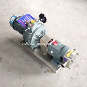 Lobe Rotor Type Electric Gear Hot Oil/Palm Oil/Oil Transfer Pump pictures & photos