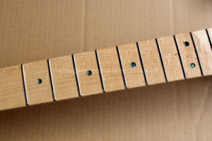 Tele Style Electric Guitar Kit with Bird Eye Maple Neck pictures & photos