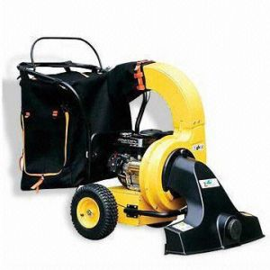 Gasoline 5.5HP Power Leaf Blower (GAG5573) pictures & photos