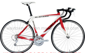 Road Bike_Wt-Rb-04) pictures & photos