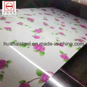 Galvanized Prepainted Flower Pattern PPGI for Building House pictures & photos