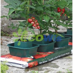 Professional Manufacturer China Tomato Growing Growpots pictures & photos