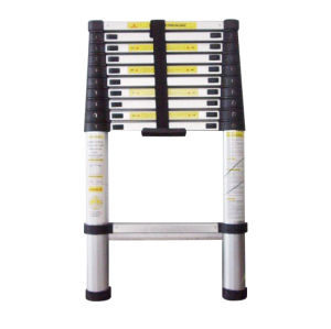 CE/En131 Approved 3.8m Telescopic Ladder with 12 Steps pictures & photos
