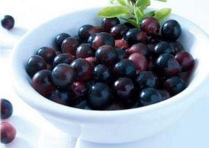 Acai Berry Extract, Acaiberry