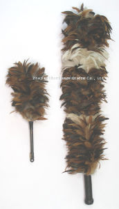 Feather Duster (D05)