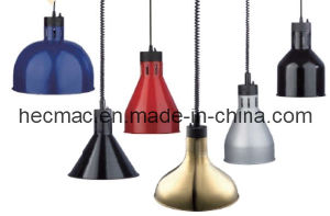Comercial Insulation Pendant Lamp (FEHWD601) pictures & photos