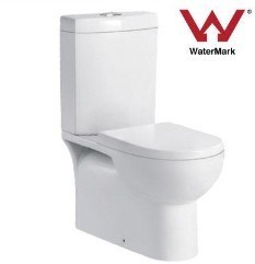 Toilet (WDS99C)