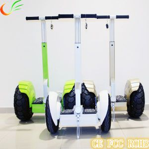 Self Balancing Scooter with City Two Wheel pictures & photos