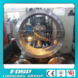 Low Power Consumption Ring Die for Pellet Machine pictures & photos