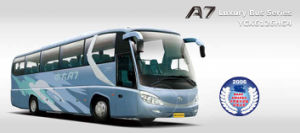 Luxury Bus (YCK6126HG4)