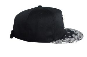 Custom Designer Hats Fashion Hip Hop Cottom Snapback Cap Hat pictures & photos