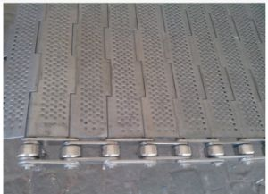 Plate Conveyor Belt for Tunnel Oven, Drying, Washing pictures & photos