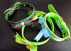 Christmas Pet Gift Collars pictures & photos