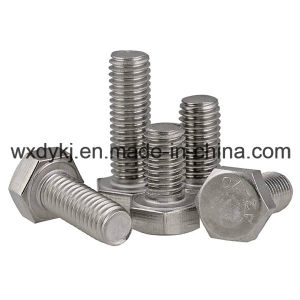 Stainless Steel Full Thread Hexagon Head Hex Bolt pictures & photos