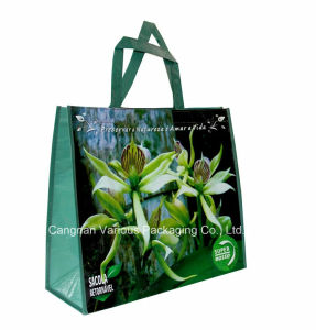 Recycled PP Woven Bag, Non Woven Bag, Shopping Bag, Tote Bag pictures & photos
