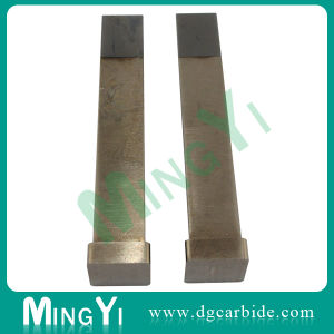Low Price Square Shaped Tungsten Carbide Punch pictures & photos