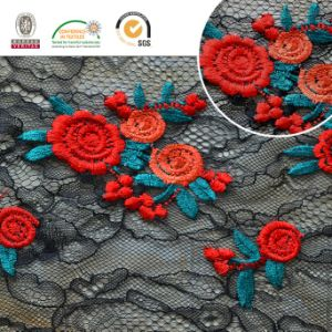 Double Lace Meltpoly Colorful Embroidery in Nylon Lace Fabric pictures & photos