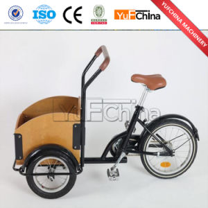Electric Tricycle Cargo Bike Price / Electric Bike Child in China pictures & photos