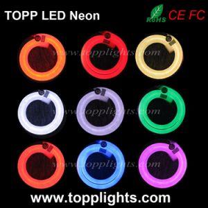 230V 120V 24V SMD5050 LED RGB Neon Flex pictures & photos