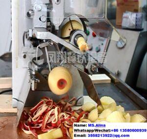 Fxp-22 Apple Peeling Pitting Seperating Machine Fruit Peeler Apple Peeler pictures & photos