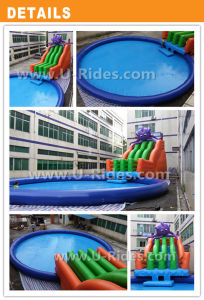 Gaint Inflatable Ocean Octopus Water Park With Pool pictures & photos