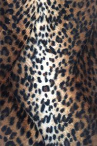 Animal Pattern Print Velvet Fabric for Fashion Garment (EDM5071) pictures & photos
