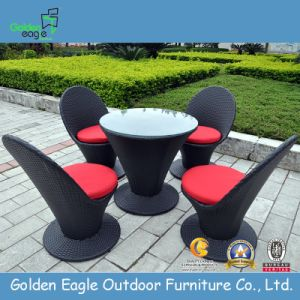 Modern Outdoor wicker Sofa Furniture (FP0201)