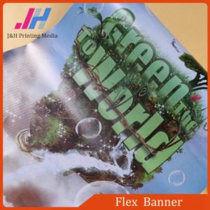 360GSM Flex Banner Printing Material Stick to Wall pictures & photos