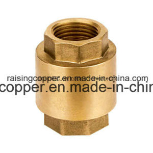 Brass Spring Check Valve pictures & photos