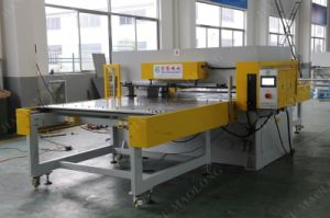 Ml Supply Blister Packaging Auto-Feeding Cutting Machine pictures & photos