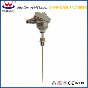 Wb Series Integration Temperature Transmitter pictures & photos