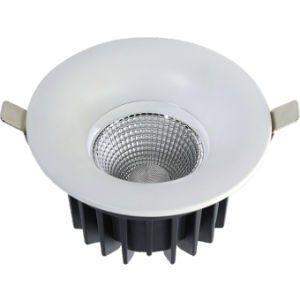COB 20W LED Downlight for Store Lighting & Gallery Lighting pictures & photos