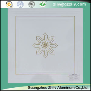 Fresh and Elegant Aluminum Composite Panel Aluminum Ceiling pictures & photos
