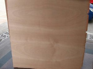 Poplar Core Commercial Plywood Bintangor F/B pictures & photos