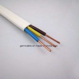 Quality & Standard BVVB-Parallel Line Cable pictures & photos