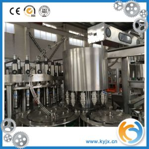 Rcgf Series Filling Machine for Liquid Filling pictures & photos