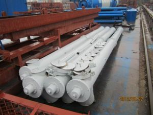 Screw Conveyor for Cement with Low Price Sale in Russia pictures & photos