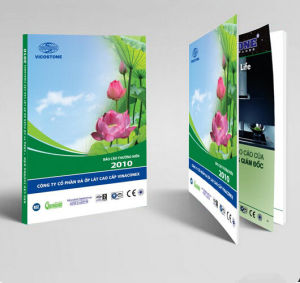 Book Brochure Booklet Comic Magazine Catalog Printing (jhy-260)