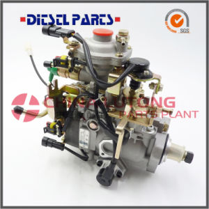 Fuel Injection Pump Nj-Ve4/11e1800r017 for Dong Feng Cyqd32t pictures & photos
