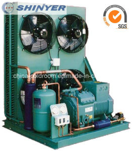 14-28HP Air-Cooled Condensing Units with Semi-Hermetic Bitzer Compressors Low Temperature pictures & photos