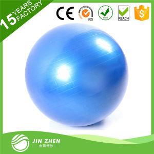 Yoga Balance Gym Ball, Swiss Gym Ball with Yoga Bump
