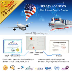 Best Logistics Service From China to USA pictures & photos