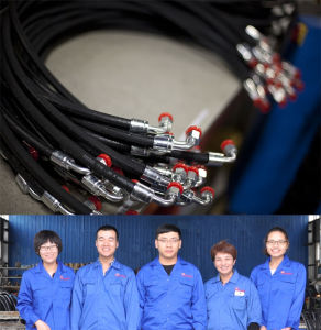 Hydraulic Brake Hose with Connection Assembly Made in China